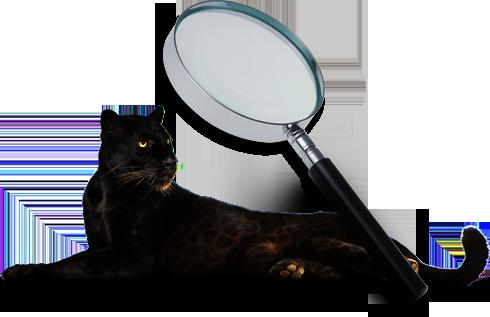 Metrixware Project Monitoring